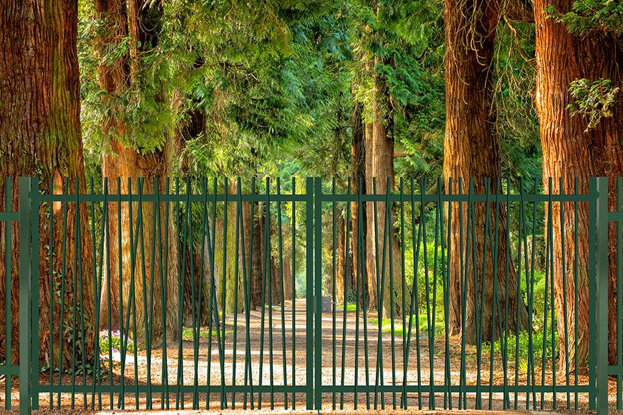 Puerta batiente Exotic Plus en avenida de árboles